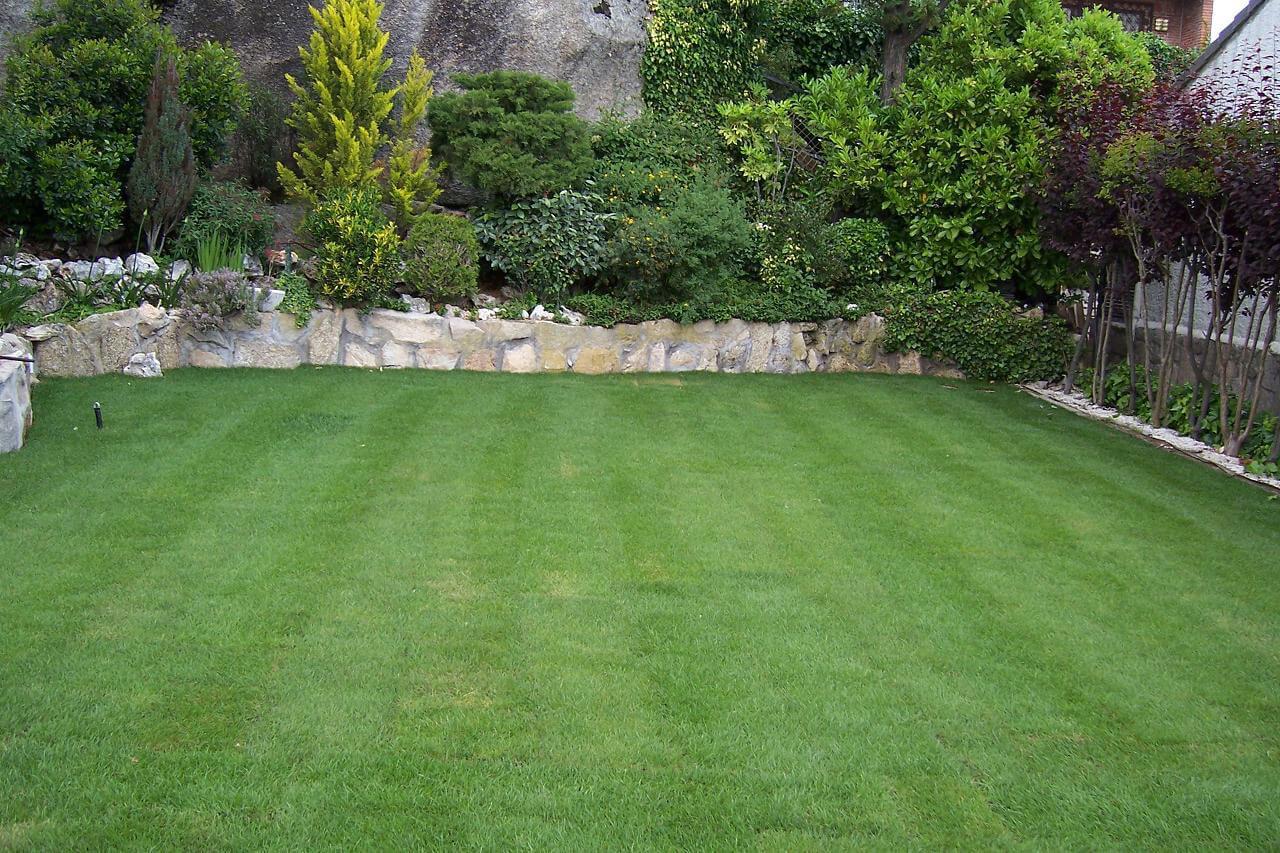 Mantenimiento de jardines en madrid por kirotura majadahonda for Mantenimiento de jardines